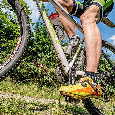 MTB Mountainbike EIfel eifelheld:in Nordeifel